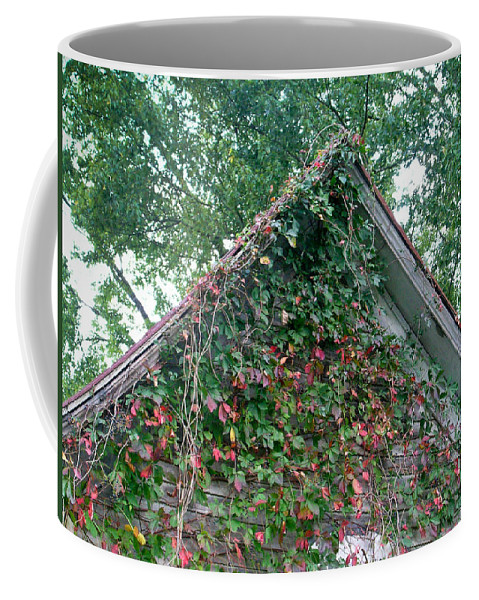 Gable Coffee Mug featuring the photograph Colorful Gable by Douglas Barnett