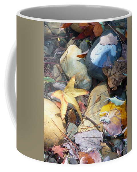 Leaves Coffee Mug featuring the photograph Colorful Leaves And Rocks In Creek by Carol Groenen