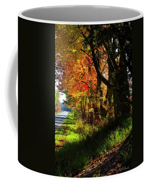 Photography Coffee Mug featuring the photograph Colorful Maples by Frederic A Reinecke