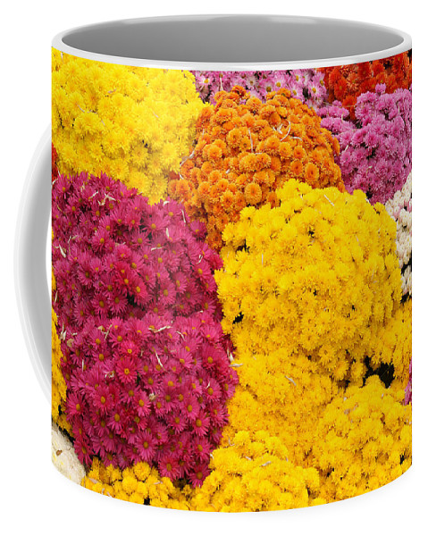 Flowers Coffee Mug featuring the photograph Colorful Mum Flowers Fine Art Abstract Photo by James BO Insogna