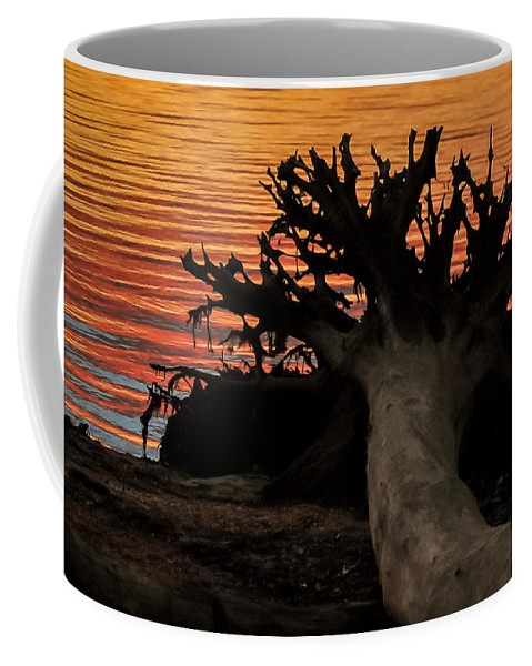 Terry D Photography Coffee Mug featuring the photograph Colorful Roots by Terry DeLuco
