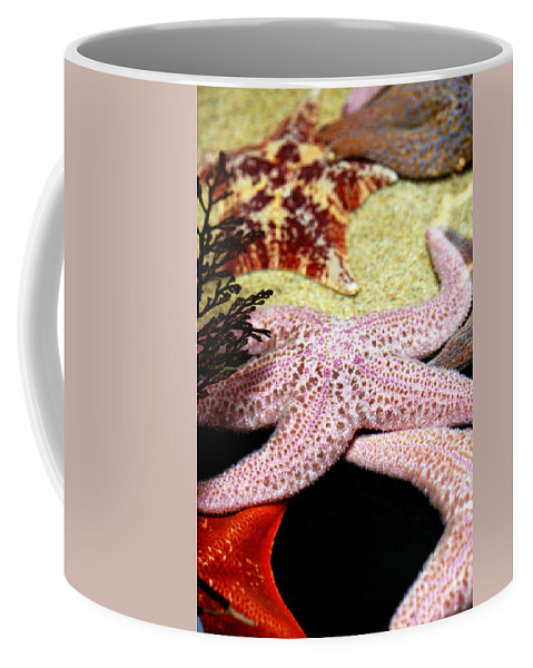 Animal Coffee Mug featuring the photograph Colorful Starfish by Marilyn Hunt