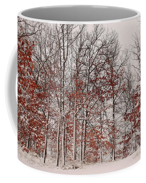 Winter Coffee Mug featuring the photograph Colorful Winters Day by Frozen in Time Fine Art Photography