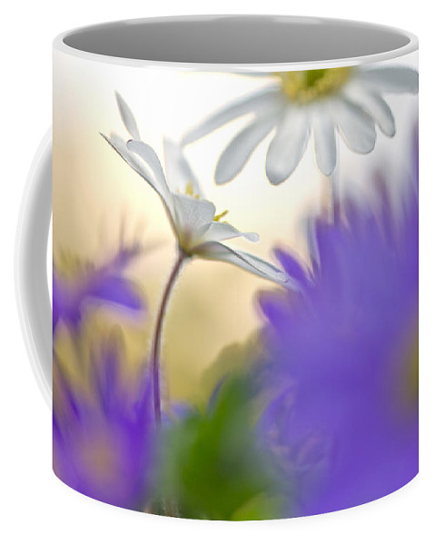 Outdoor Coffee Mug featuring the photograph Colorfull Spring by Teuni Stevense