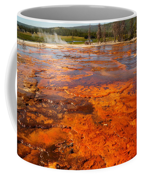 National Park Coffee Mug featuring the photograph Colors And Layers by Beth Collins