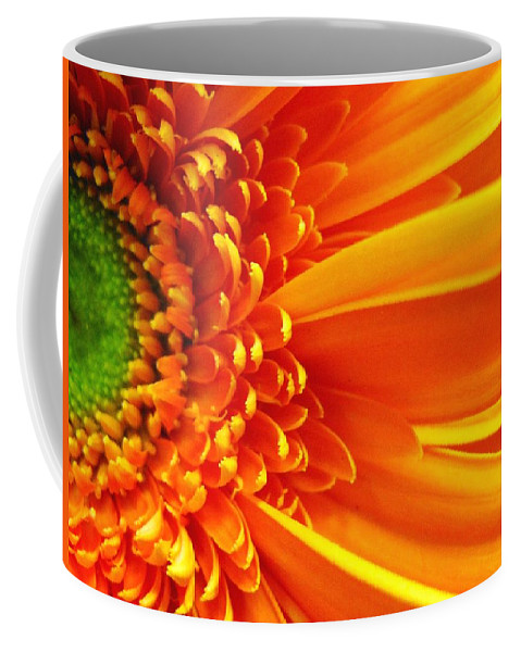 Red Coffee Mug featuring the photograph Colors Galore by Rhonda Barrett