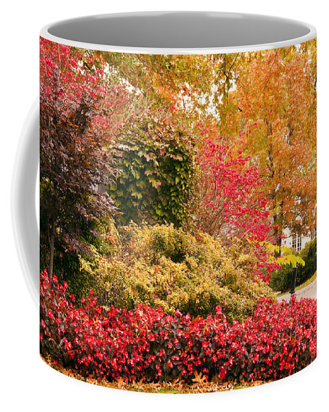 Colors Of Autumn Coffee Mug featuring the photograph Colors Of Autumn by Terry Anderson