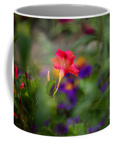 Flowers Coffee Mug featuring the photograph Colors Of Spring by Lori Tambakis
