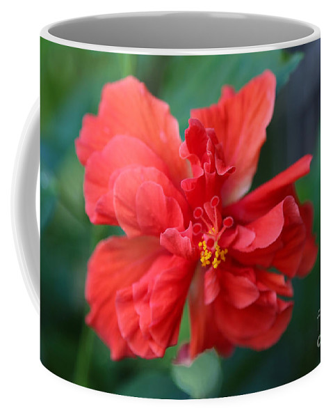 Hibiscus Coffee Mug featuring the photograph Colors Of The Tropics Hibiscus by Carol Groenen