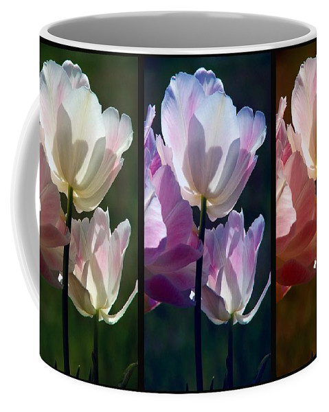Coloured Tulips Coffee Mug featuring the photograph Coloured Tulips by Robert Meanor
