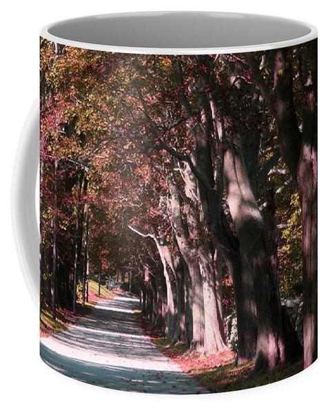 Colt State Park Coffee Mug featuring the photograph Colt State Park Bristol Rhode Island by Tom Prendergast