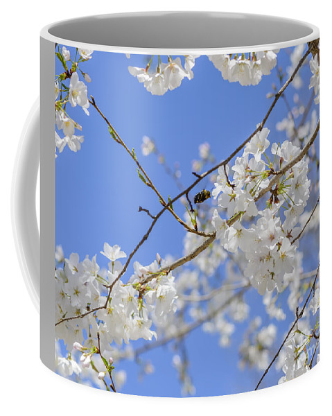 Bumblebee Coffee Mug featuring the photograph Coming Of Spring by Elvis Vaughn