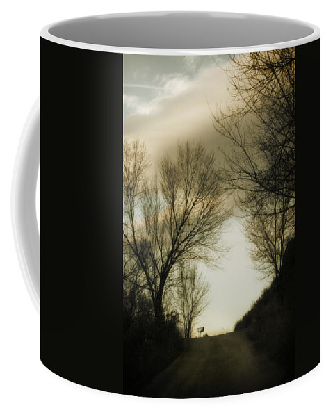Rural Coffee Mug featuring the photograph Coming Up The Drive 2 by Marilyn Hunt