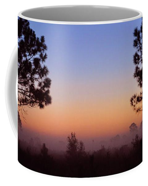 John Knapko Coffee Mug featuring the photograph Companions by John Knapko