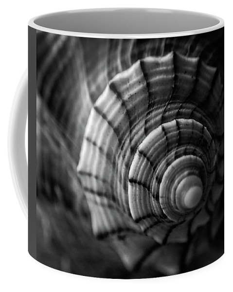 Conch Coffee Mug featuring the photograph Conch Shell In Black And White by Chrystal Mimbs