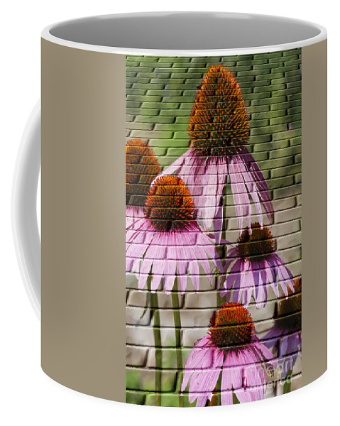 Photo Coffee Mug featuring the photograph Cones In Craquelure by Deborah Benoit