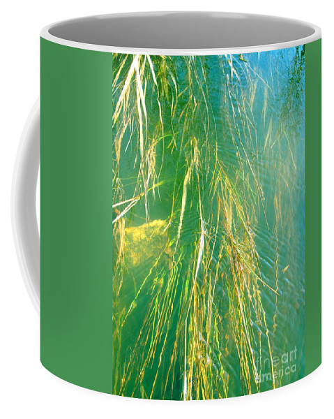 Water Coffee Mug featuring the photograph Consequence by Sybil Staples