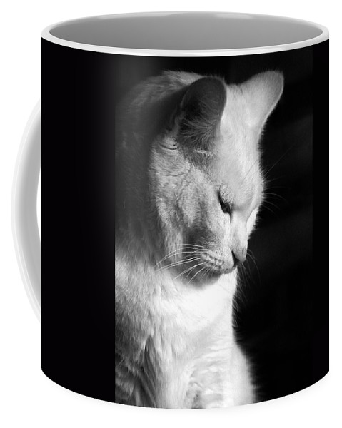 Nature Coffee Mug featuring the photograph Contempation by Bob Orsillo