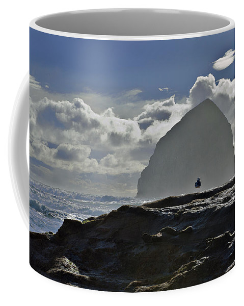 Bird Coffee Mug featuring the photograph Contemplation by John Christopher