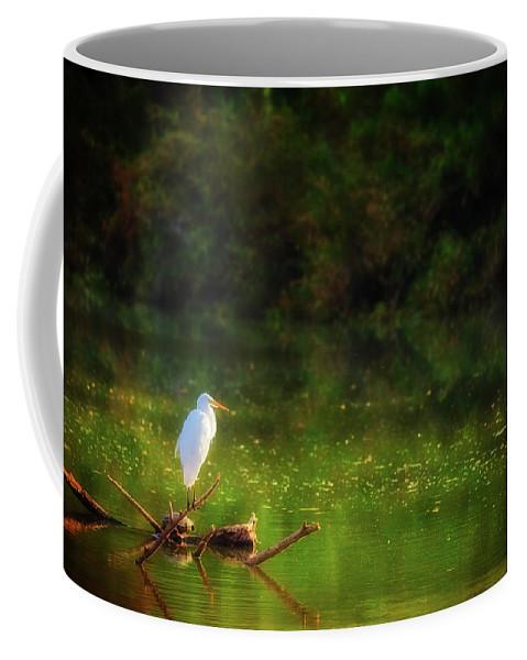 Animal Coffee Mug featuring the photograph Contemplation by Rick Furmanek