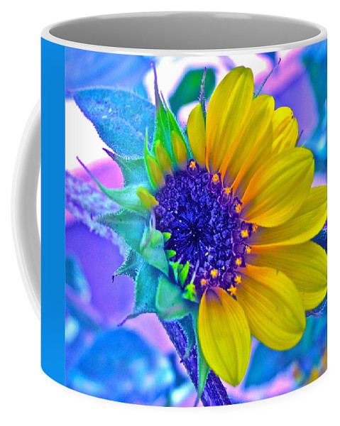 Photographs Coffee Mug featuring the photograph Content by Gwyn Newcombe