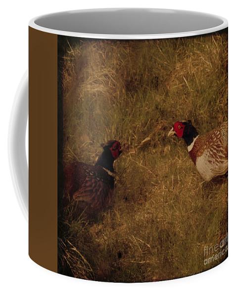 Pheasant Coffee Mug featuring the photograph Conversations by Angel Tarantella