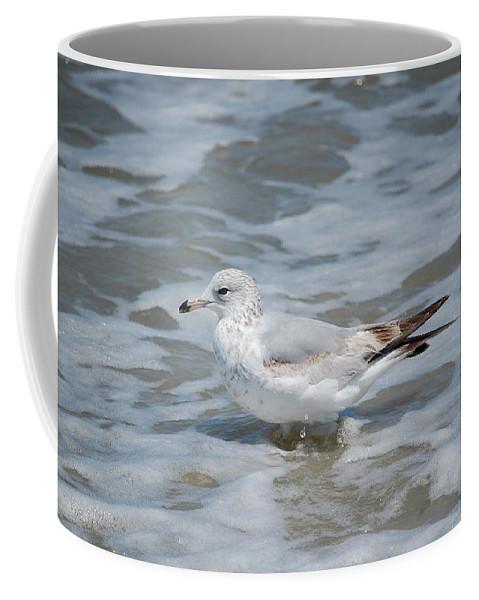 Beach Coffee Mug featuring the photograph Cool Calm by Angie Elliott