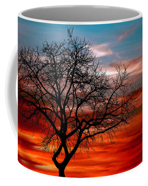 Photo Coffee Mug featuring the photograph Cooling Down by Munir Alawi