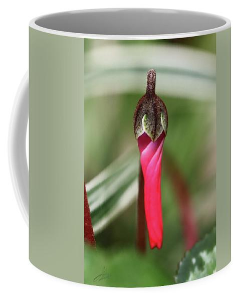 Flower Coffee Mug featuring the photograph Coquettish Cyclamen by April Zaidi