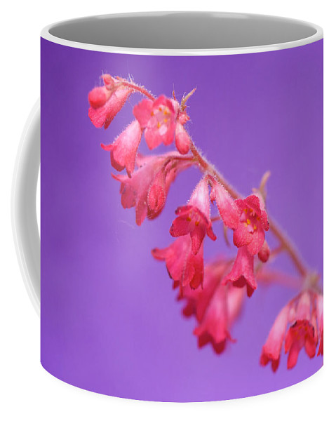 Interior Design Coffee Mug featuring the photograph Coral Bells by Lisa Knechtel