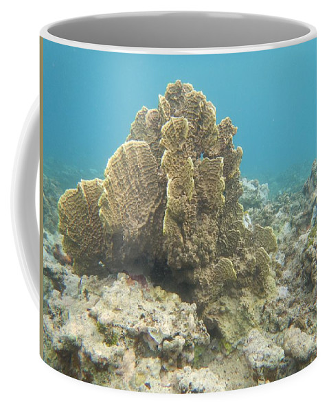 Aquatic Coffee Mug featuring the photograph Coral Tree by Michael Scott