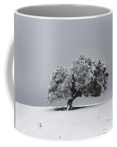 Tree Coffee Mug featuring the photograph Corral Hollow Tree In Snow by Karen W Meyer