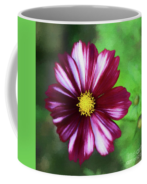 Cosmos Bipinnatus 'velouette' Coffee Mug featuring the digital art Cosmos Velouette by Liz Leyden