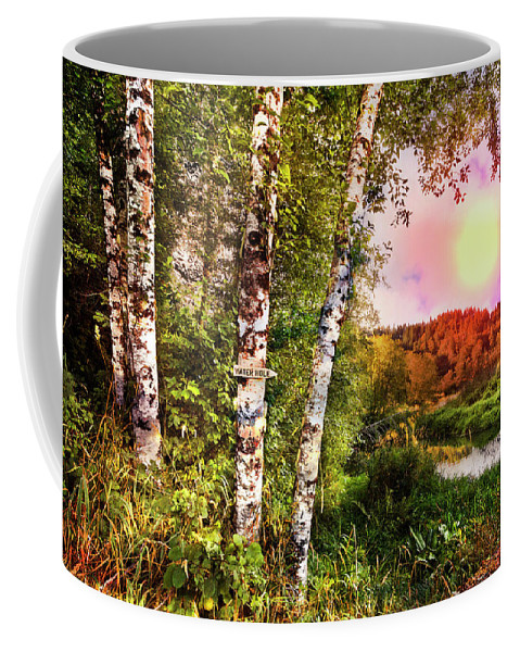 Appalachia Coffee Mug featuring the photograph Country Birch by Debra and Dave Vanderlaan