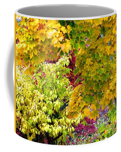 Autumn Coffee Mug featuring the photograph Country Color 15 by Will Borden