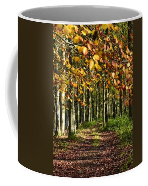 Country Road Coffee Mug featuring the photograph Country Road by Svetlana Sewell