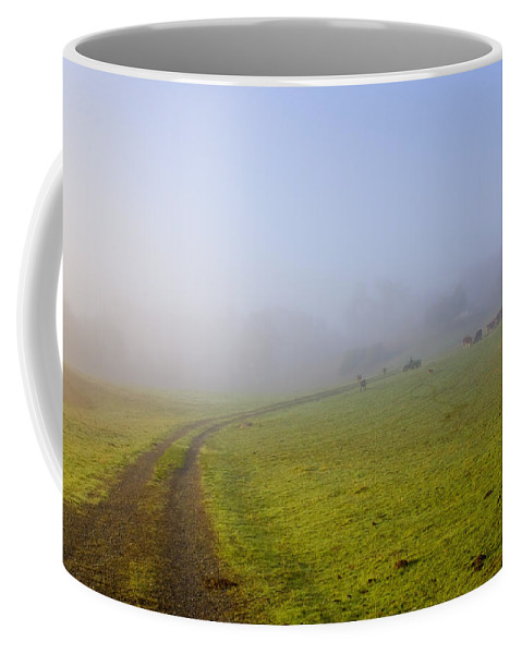 Road Coffee Mug featuring the photograph Country Roads by Mike Dawson
