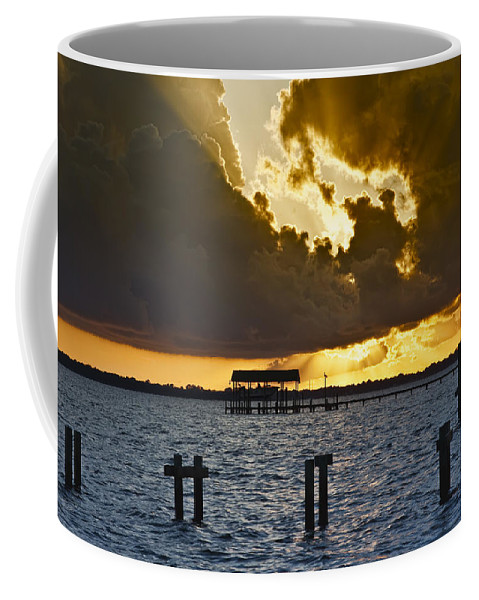 Bay Coffee Mug featuring the photograph Courtship by Janet Fikar