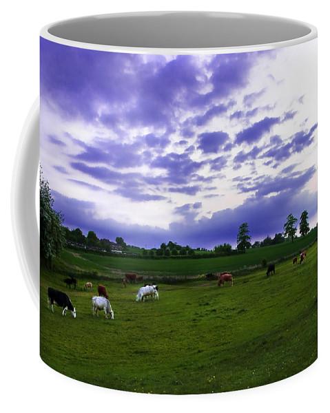 Countryside Coffee Mug featuring the photograph Cow Field by Svetlana Sewell