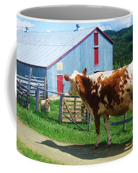Photograph Cow Sheep Barn Field Newfoundland Coffee Mug featuring the photograph Cow Sheep And Bicycle by Seon-Jeong Kim