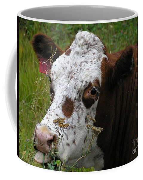 Tongue Coffee Mug featuring the photograph Cow Tongue by Louise Magno