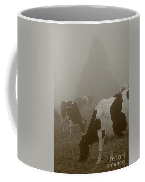 Animals Coffee Mug featuring the photograph Cows In The Mist by Gaspar Avila