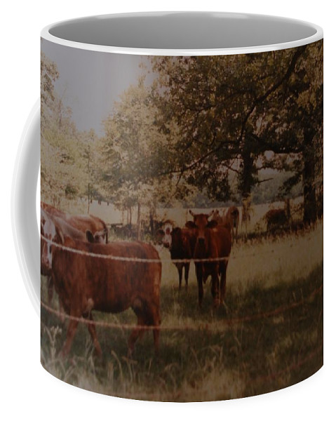 Cows Coffee Mug featuring the photograph Cows by Rob Hans