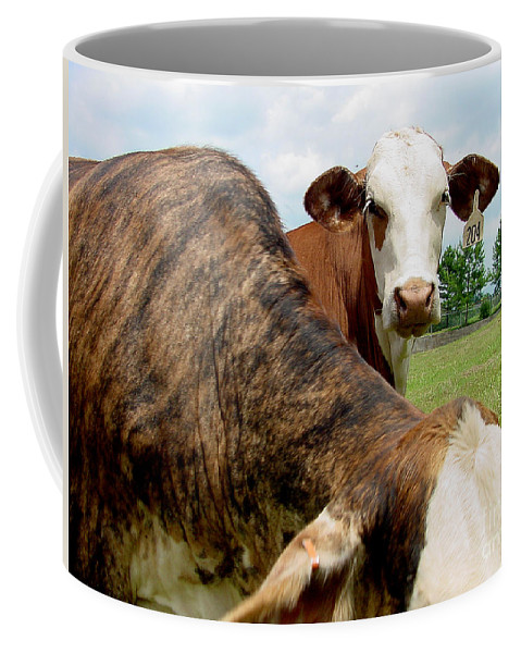 Cow Coffee Mug featuring the photograph Cows8938 by Gary Gingrich Galleries