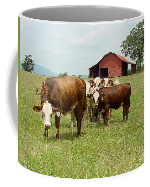 Cow Coffee Mug featuring the photograph Cows8939 by Gary Gingrich Galleries