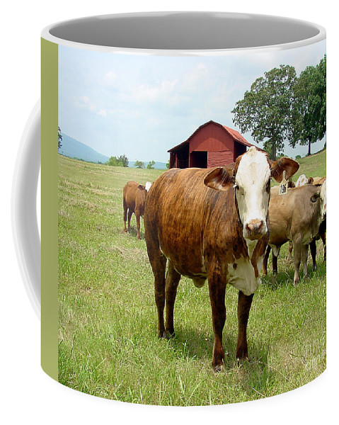 Cow Coffee Mug featuring the photograph Cows8944 by Gary Gingrich Galleries
