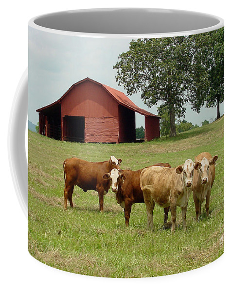 Cow Coffee Mug featuring the photograph Cows8954 by Gary Gingrich Galleries