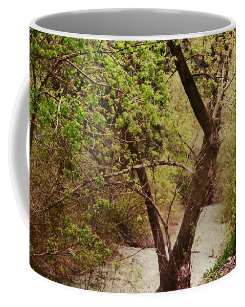 Dreamy Coffee Mug featuring the photograph Cozy Stream In American Fork Canyon Utah by Colleen Cornelius
