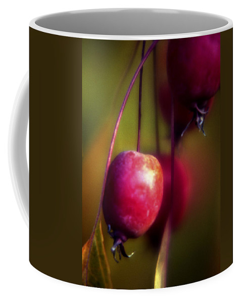 Macro Coffee Mug featuring the photograph Crabapple by Lee Santa
