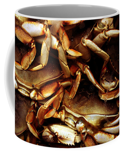Ocean Coffee Mug featuring the photograph Crabs Awaiting their Fate by Jennifer Bright